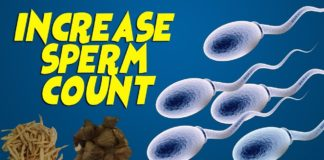 fertility, How to increase sperm count, trend health