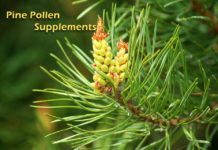 Pine Pollen Supplement, Trend health