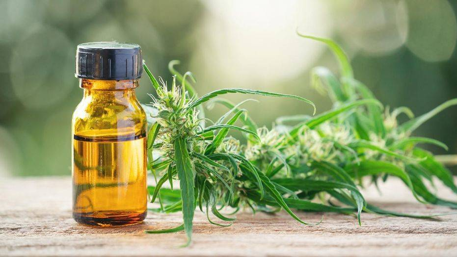 Benefits of CBD, Trend Health