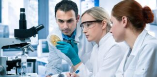 Pharmaceutical Research, Trend Health